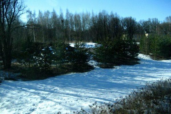 フィンランドは雪!