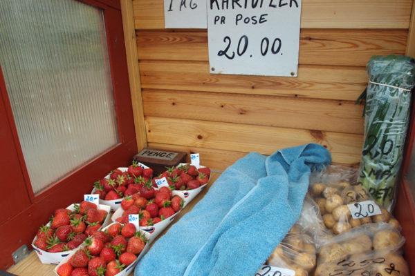 デンマークの夏のお楽しみ無人販売所巡り