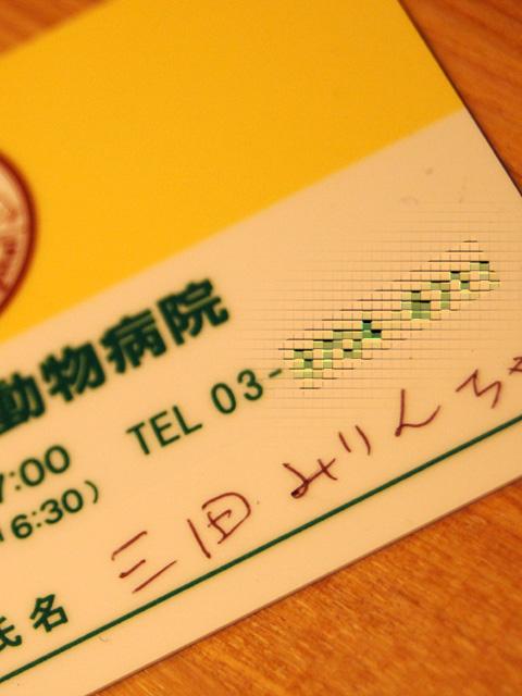 091201-9.jpg